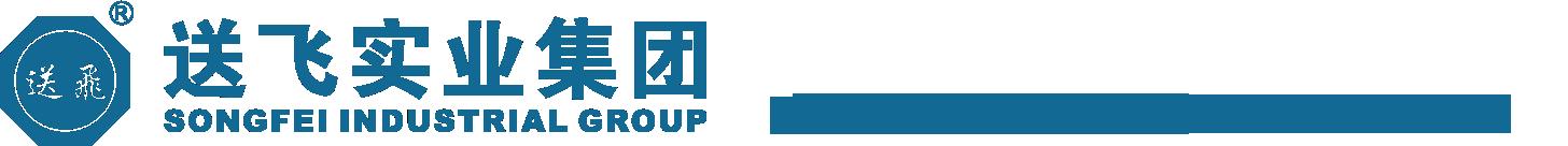送飞实业集团logo